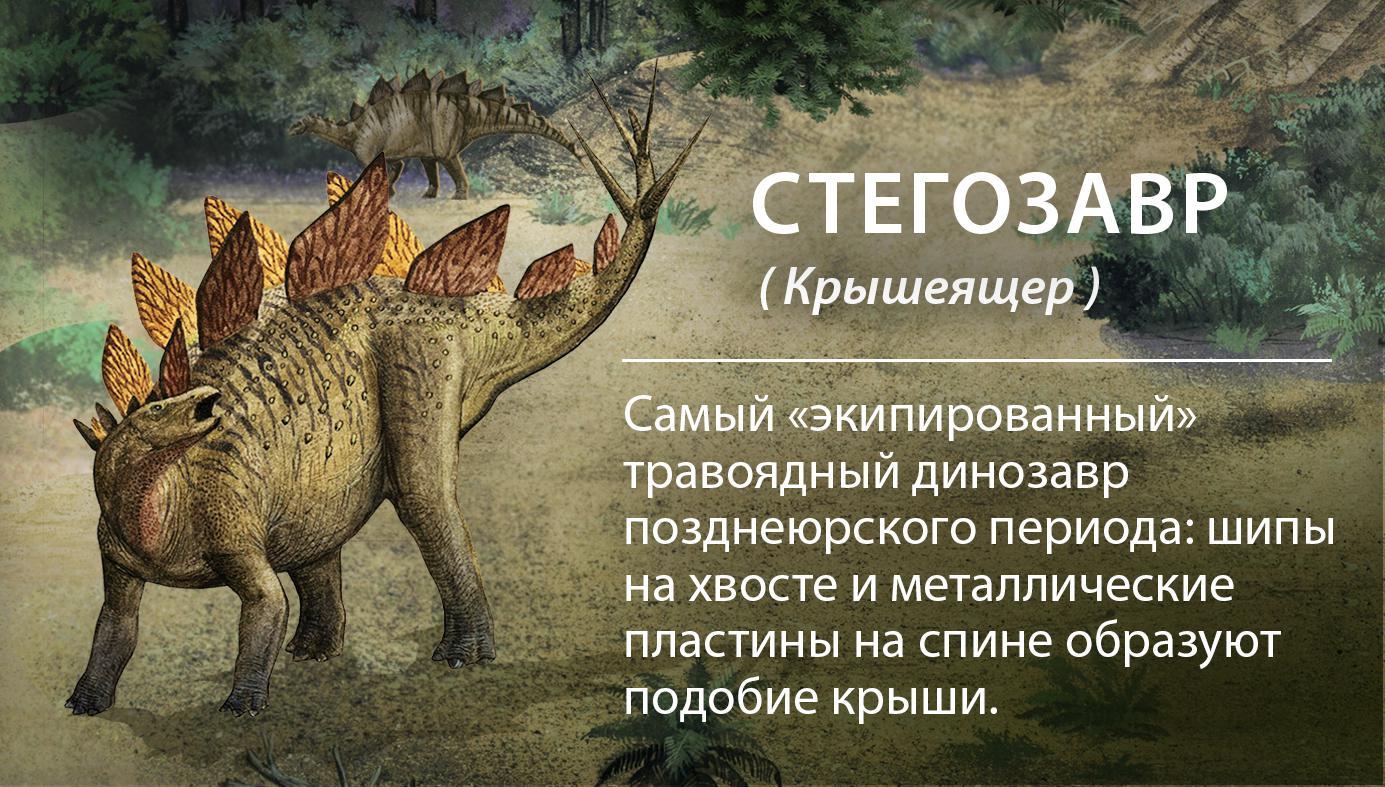 виды динозавров картинки и описание плохих компаний воруют